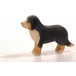 Ostheimer Berner Sennenhund