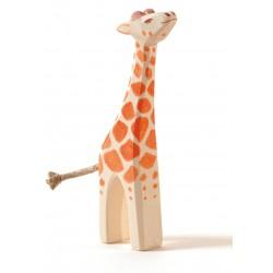 Giraffe klein Kopf hoch